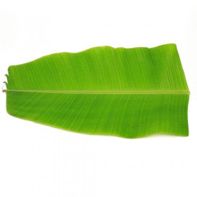 Banana Leaf 1 pc