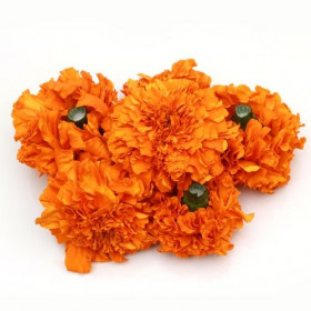 Marigold Orange Flower 500g