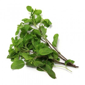 Fresh Tulsi Leaves 25g